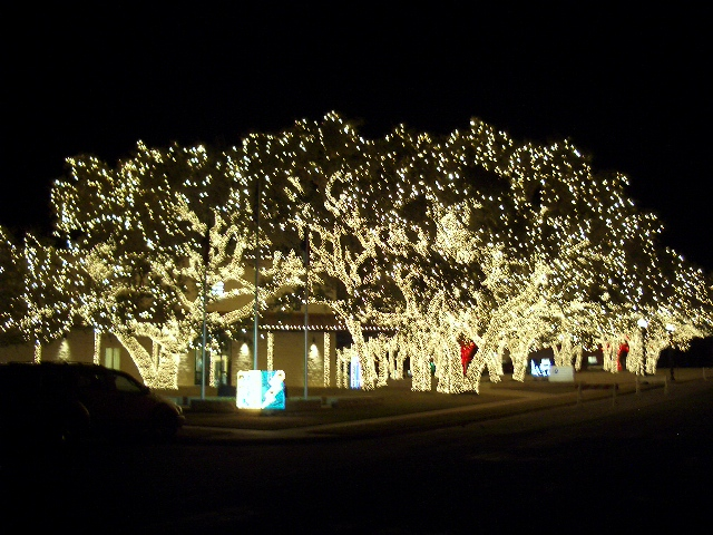 Johnson City Christmas Parade 2021 Johnson City Texas Tx Lights Spectacular Annual Event